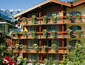 3-star Hotel Butterfly in Zermatt, Switzerland